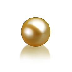 Жемчужина золотистая морская Акойя (Япония) 7,5-8 мм. Качество наивысшее