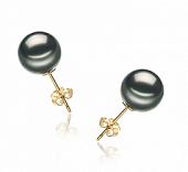 Пусеты из золота 585 пробы с черными морскими Таитянскими жемчужинами 9-9,5 мм